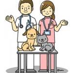 動物病院内業務
